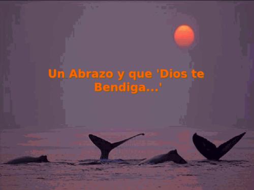 que-dios-te-bendiga