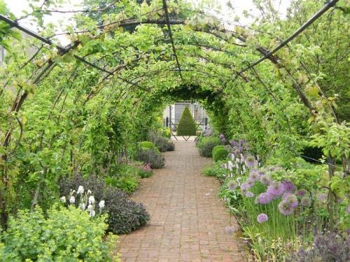 jardinaromatico